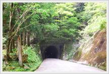 伊豆半島のど真ん中にある天城山荘